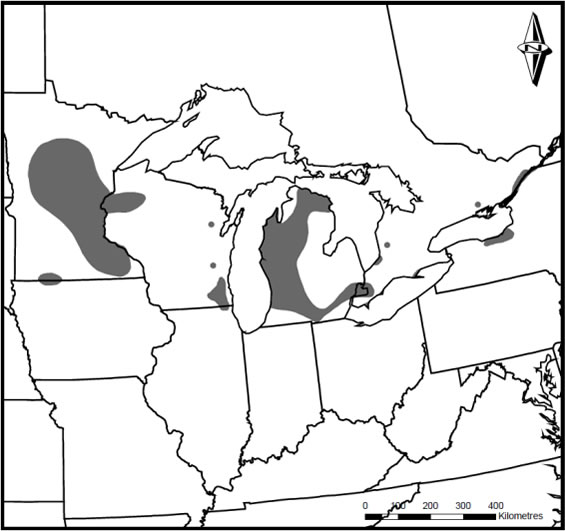Map showing the global distribution of the Pugnose Shiner in central North America, where the species occurs in the upper Mississippi River and Great Lakes basins (see long description below).