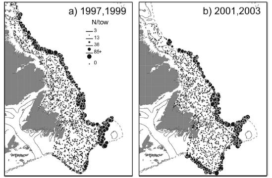 Two maps showing the geographic distribution of Roundnose Grenadier caught in fall surveys of the Labrador and Northeast Newfoundland shelves and the Grand Bank for selected years between 1995 and 2003.