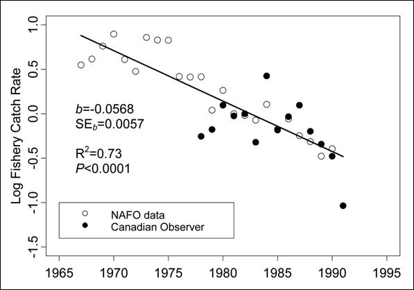 Chart giving loge-transformed standardized catch rates (in tonnes per hour) for the Roundnose Grenadier fishery in Northwest Atlantic Fisheries Organization (NAFO) subareas 2 and 3. Catch rates are calculated from catch and effort data available from NAFO and the Canadian Observer Program.
