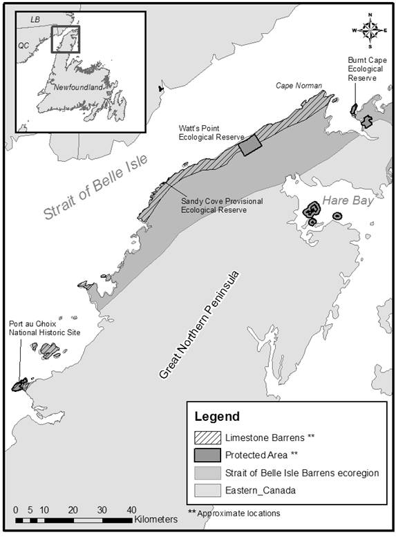Figure 1 shows the limestone barrens of the Strait of Belle Isle Ecoregion, Great Northern Peninsula of insular Newfoundland