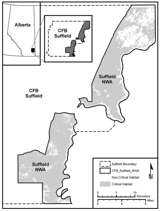 Appendix 2. is a representation of a map showing the location of Sprague's Pipit critical habitat in the south and north block of the Canadian Forces Base Suffield National Wildlife Area (Alberta). At the bottom right corner of the map, the legend identifies the following elements: the boundary of CFB Suffield, the boundary of the Suffield National Wildlife Area, what is identified as critical habitat within Suffield NWA, and the scale of the map.