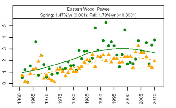 Chart showing long-term trends in spring and fall migration indices of Eastern Wood-pewees recorded at Long Point Bird Observatory, Ontario (1961 to 2010) (see long description below).