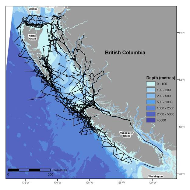 Locations of 21 DFO shipboard cetacean surveys between 2002-2008. Lines indicate on-effort survey track (Ford et al. in prep., b). Map of B.C. - Extracted Vector Shoreline Series, Government of Canada, Department of Fisheries and Oceans, Science, Canadian Hydrographic Service. Bathymetry layer - coastal digital elevation model produced by Government of Canada, Natural Resources Canada, Geological Survey of Canada (Pacific).