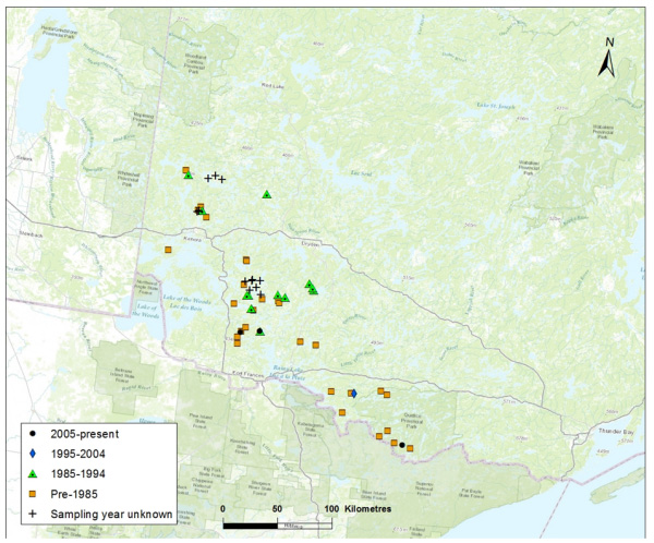 Map showing Distribution of Northern Sunfish in northwestern Ontario (Saskatchewan-Nelson DU). Symbols indicate locations and dates of records.. (see long description below)