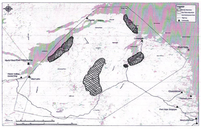 First of two maps identifying areas important to boreal caribou during the summer.