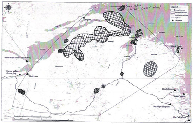 First of three maps displaying recent winter sightings of boreal caribou.