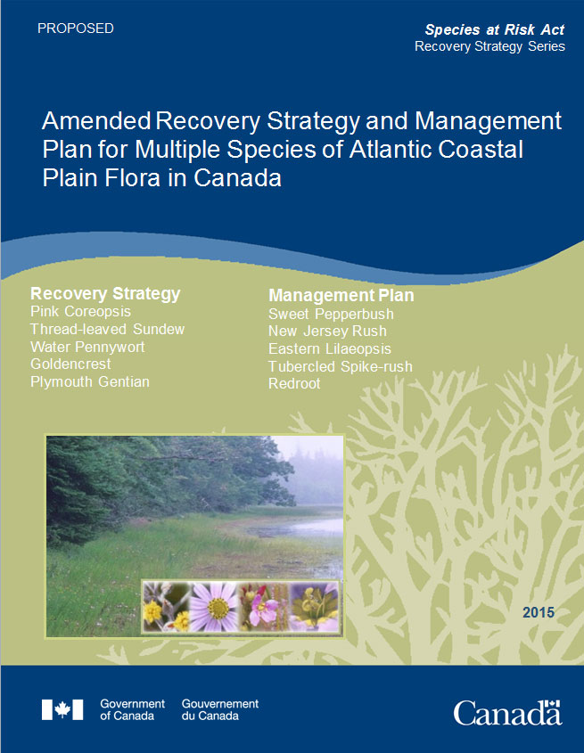 Recovery Strategy and Management Plan for Multiple Species of Atlantic Coastal Plain Flora