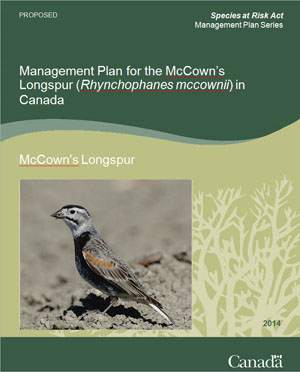 Cover: Management Plan for the McCown's Longspur (Rhynchophanes mccownii) in Canada - 2014 [Proposed]