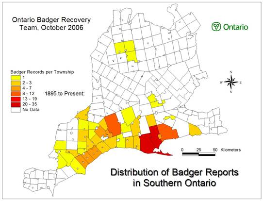 Figure 3 shows the distribution of American Badger observations in southern Ontario.  The map is separated per township and different colors have been used to represent the different American Badgers records per township.
