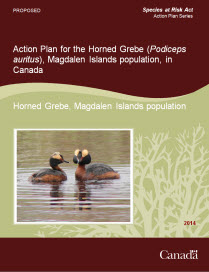 Cover Page: Action Plan for the Horned Grebe (Podiceps auritus), Magdalen Islands population, in Canada