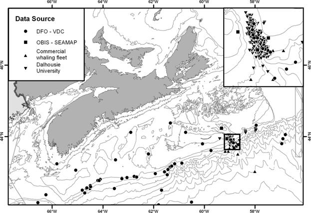 Figure 2. Sightings of northern bottlenose whales along the Scotian Shelf. Inset shows sightings in the mouth of the Gully. (Based on incomplete sightings data. Shallow water sightings on the Scotian Shelf are likely spurious.)