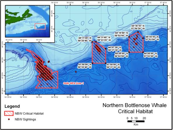 Figure 4. Proposed critical habitat of northern bottlenose whale. (Gully MPA Zone 1 coordinates are available at:  http://gazette.gc.ca/archives/p2/2004/2004-05-19/html/sor-dors112-eng.html