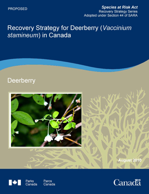 Species at Risk Act Recovery Strategy Series Adopted under Section 44 of SARA Recovery Strategy for Deerberry (Vaccinium stamineum) in Canada Deerberry May 2010