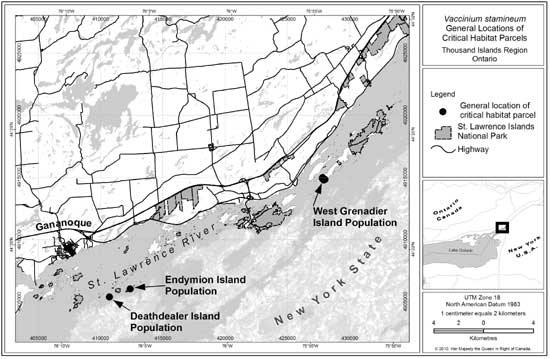 Figure 1: General locations of Deerberry critical habitat parcels in the Thousand Islands Region of Ontario. Detailed maps of parcels are presented later in this document.