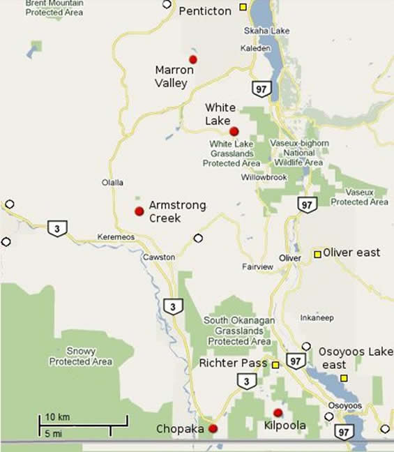 Map showing the distribution of Sage Thrasher records from British Columbia.