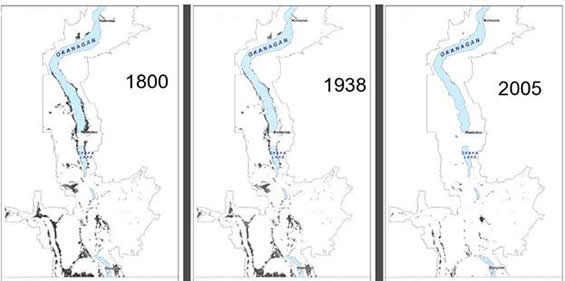 Maps showing the extent of sagebrush shrub steppe in the southern Okanagan and lower Similkameen valleys in 1800, 1938 and 2005.