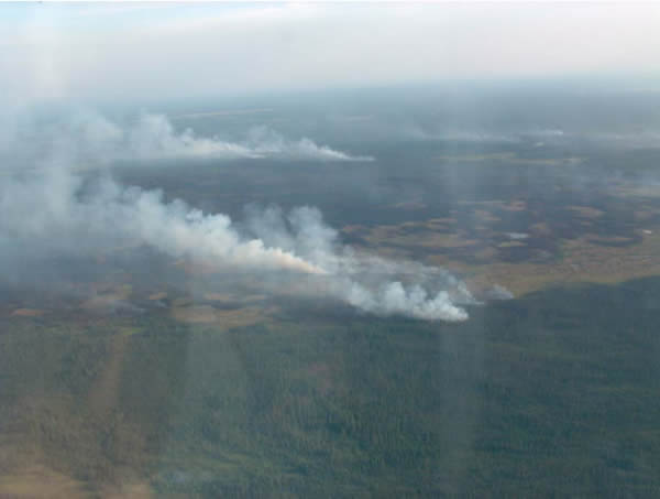 Photograph of a forest fire in boreal caribou habitat east of Sambaa K'e. See long description below
