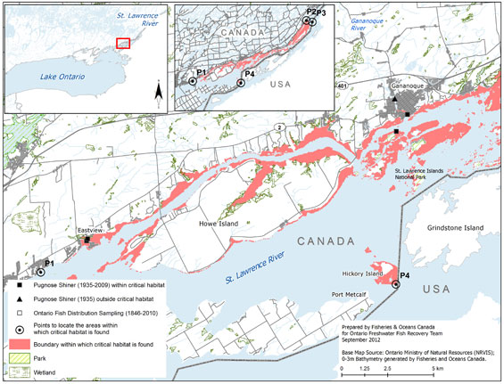 Figure 13a. Area within which critical habitat is found for the Pugnose Shiner in the St. Lawrence River. (See long description below)