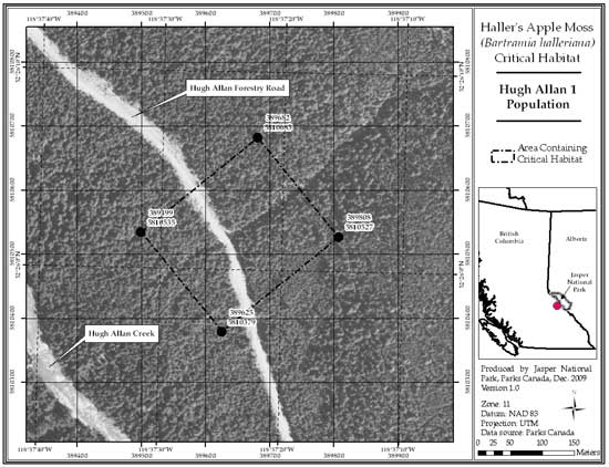 Figure 8: Location of critical habitat at Hugh Allan 1, British Columbia (parcel 689_7). Refer to the text for a description of critical habitat, required habitat attributes and areas excluded from critical habitat.