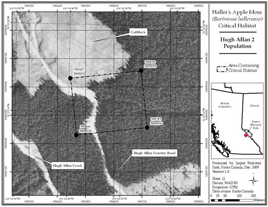 Figure 9: Location of critical habitat at Hugh Allan 2, British Columbia (parcel 689_8). Refer to the text for a description of critical habitat, required habitat attributes and areas excluded from critical habitat.